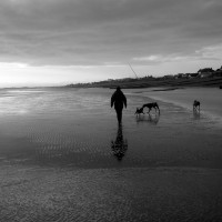 Normans Bay beach and dog walk, East Sussex - Sussex dog-friendly beach