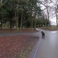 Ropner Park dog walk near Stockton, County Durham - Dog walks in County Durham