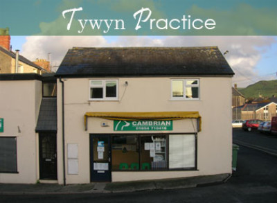 Cambrian Vet Centre, Wales - Driving with Dogs
