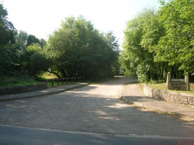 Campsall local dog walk near Doncaster, Yorkshire - Driving with Dogs