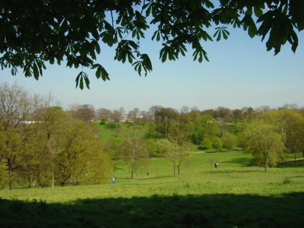 Greenwich Park local dog walk, Greater London - Dog walks in Greater London