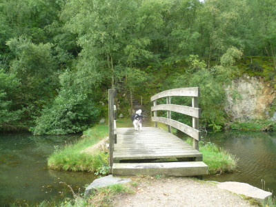 Mont Castre dog walk, Cherbourg Peninsula, France - Driving with Dogs