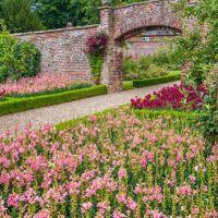 A166 Dog-friendly garden visit, East Yorkshire - dog-friendly garden visit.jpg