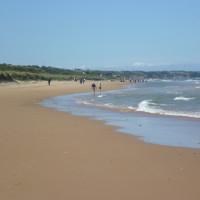 Cherbourg Peninsula dog-friendly beach, France - Image 1