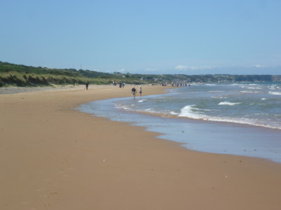 Cherbourg Peninsula dog-friendly beach, France - Driving with Dogs