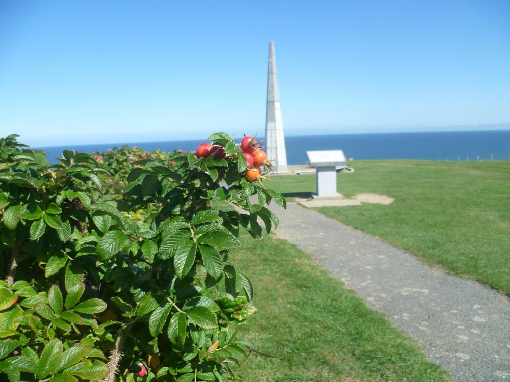 Cherbourg Peninsula dog-friendly beach, France - Image 4