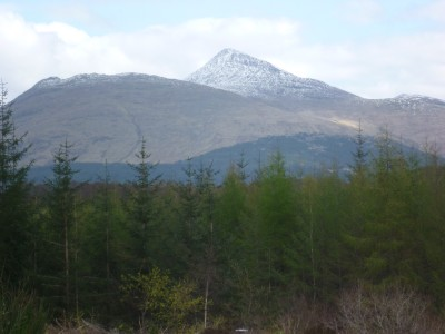 A85 dog walk between Taynuilt and Connel, Scotland - Driving with Dogs
