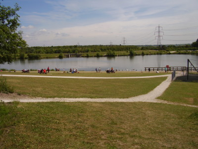 M1 Junction 29A dog walk and cafe near Bolsover, Derbyshire - Driving with Dogs