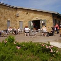 M1 Junction 29A dog walk and cafe near Bolsover, Derbyshire - Dog walks in Derbyshire