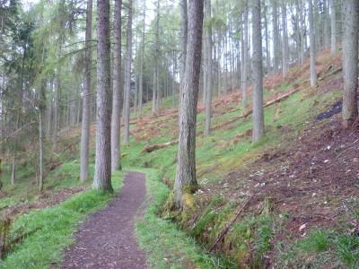 Kirkcudbright dog walk, Scotland - Driving with Dogs