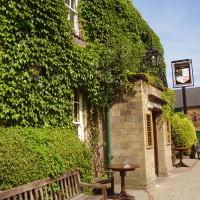 Wentworth dog-friendly pub and dog walk, South Yorkshire - Dog walks in Yorkshire