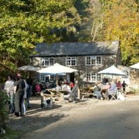 A30 Woodland dog walk and forest cafe near Bodmin, Cornwall - Driving with Dogs on the A30 near Bodmin.jpg