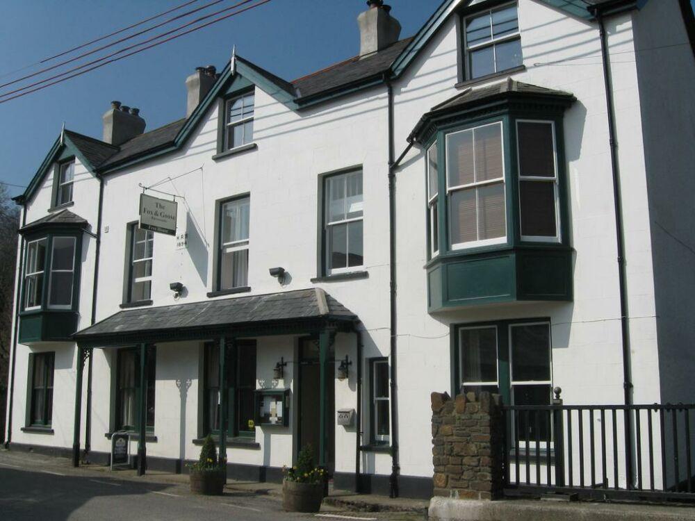 Dog friendly country pub and great local food, Devon - foxandgoose.jpg