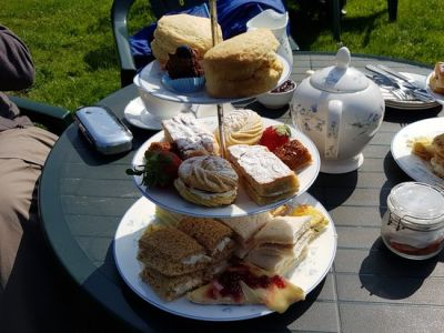 Kitnors dog-friendly Tea Garden near Minehead, Somerset - Driving with Dogs
