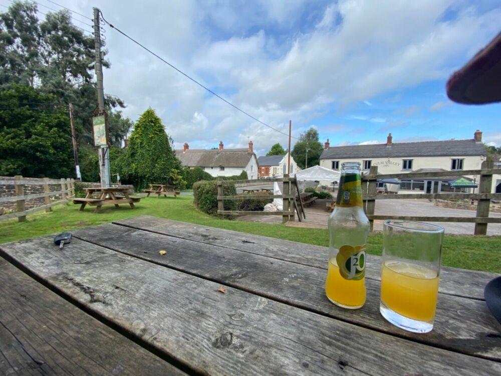 A38 dog-friendly pub and river walk near Culmstock, Devon - Devon dog-friendly pub and walk.jpeg