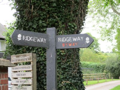 A walk on the chalk downs, Berkshire - Driving with Dogs