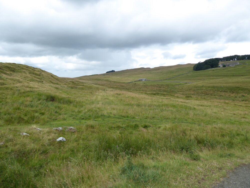 Dog walk through time in Roman Britain, Northumberland - Northumberland dog walking places.jpg