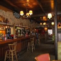 A37 dog-friendly pub near Dorchester, Dorset - IMG_0225.JPG