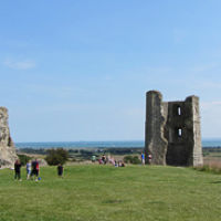 Hadleigh Country Park - accessible dog walks, Essex - Hadleigh accessible dog walks.jpeg