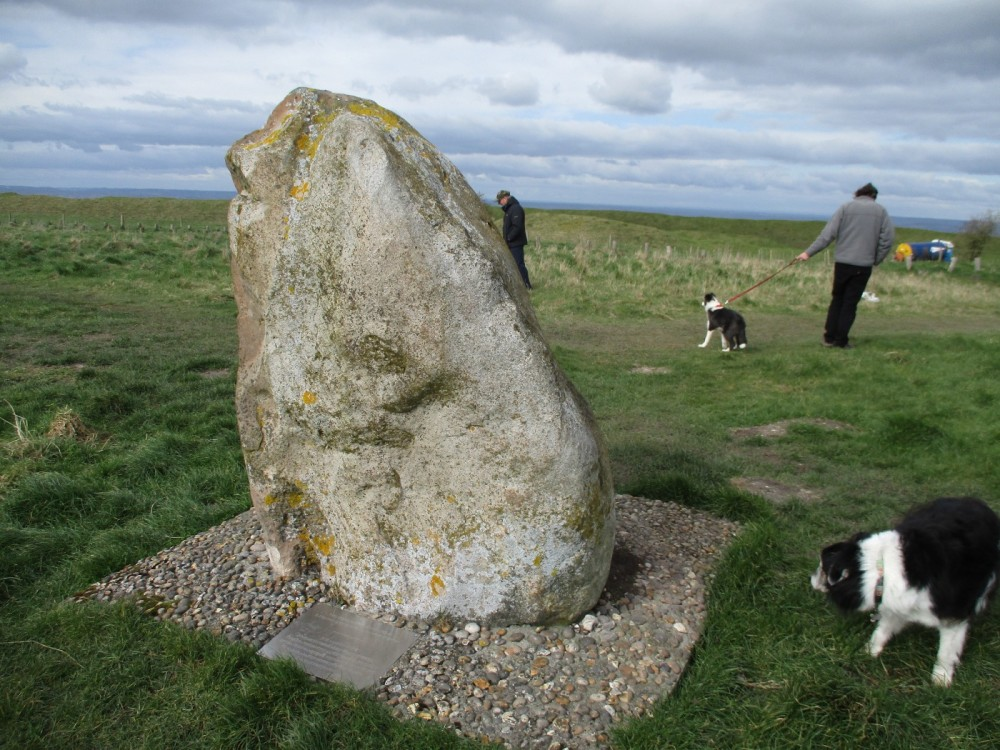 Dog walks through history and finds the start of the English nation, Wiltshire - Wiltshire dog walks.JPG