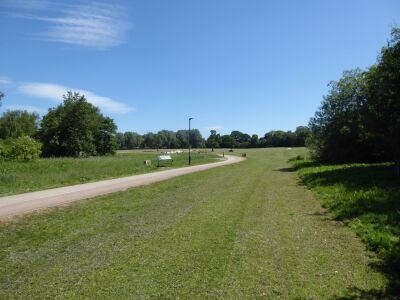 Easingwold dog walk and refreshments in the town, North Yorkshire - Driving with Dogs