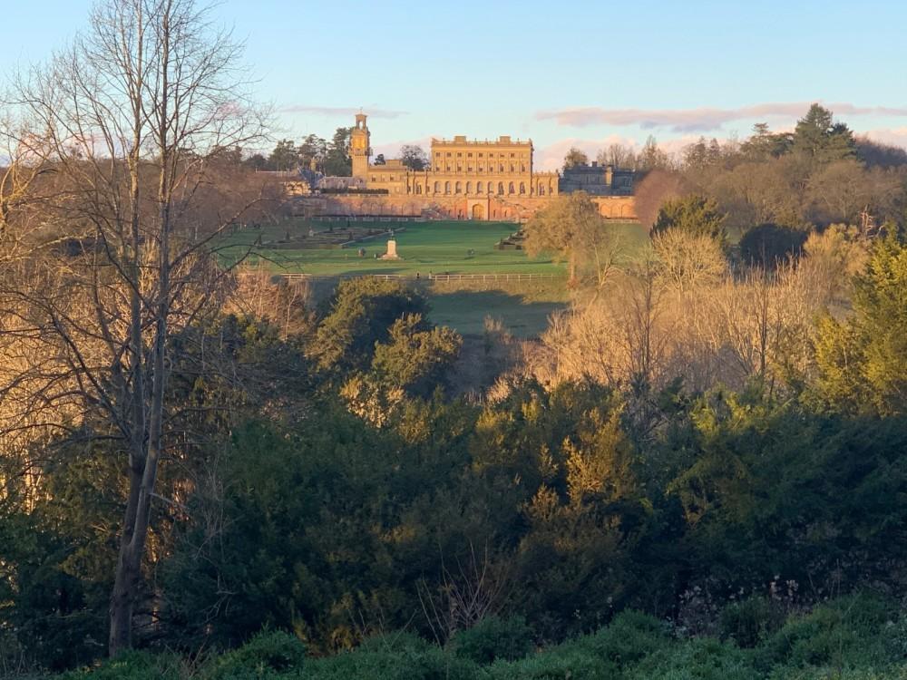 Woodlands, River and Garden dog walks at Cliveden, Buckinghamshire - IMG_0797.jpg
