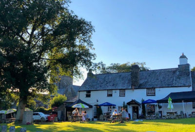 Dog-friendly village pub and dog walk, Devon - Driving with Dogs