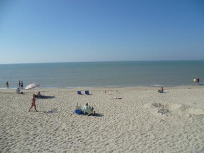Opal coast dog-friendly beach near Cucq, France - Driving with Dogs