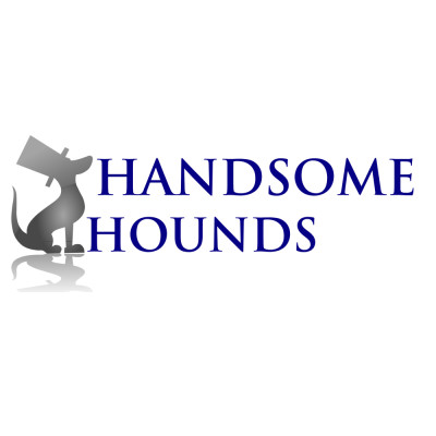 Handsome Hounds Dog Grooming Salon, Studley, Warwickshire - Driving with Dogs