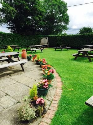M27 dog-friendly pub with B&B and Peppa Pig, Hampshire - Driving with Dogs
