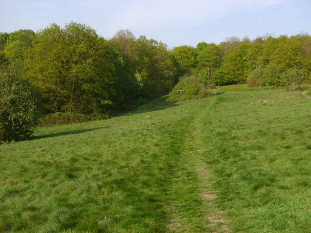 Bedfords Park dog walk, Essex - Dog walks in Essex