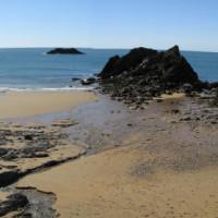 Hotel and dog friendly beach, Devon - Dog walks in Devon