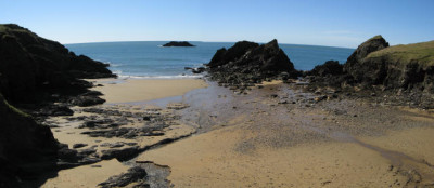 Hotel and dog friendly beach, Devon - Driving with Dogs