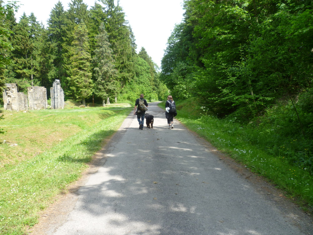 A dog walk in one of the lost villages of Verdun, France - Image 3