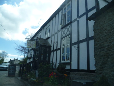 Riverside dog-friendly pub and dog walk, Herefordshire - Driving with Dogs