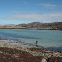 Scourie dog-friendly beach, Scotland - Dog walks in Scotland