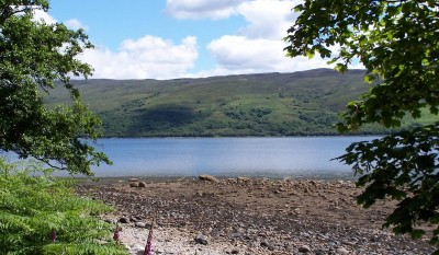A83 dog walk in Ardcastle Woods, Scotland - Driving with Dogs