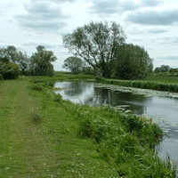 Pocklington Canal dog walk, Yorkshire - Dog walks in Yorkshire