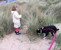 St Annes dog-friendly beach, Lancashire - Dog walks in Lancashire