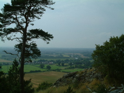 Haughmond Hill, Shropshire - Driving with Dogs