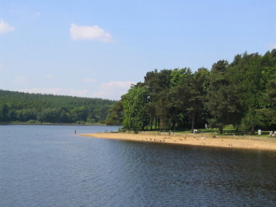 A59 Reservoir dog walk, Yorkshire - Driving with Dogs