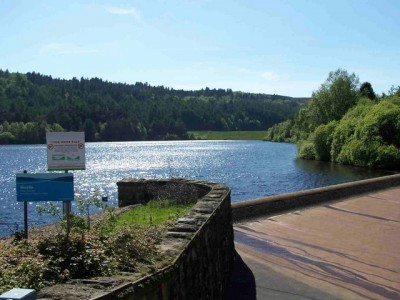 A57 quiet reservoir dog walk and dog-friendly pub near Sheffield, South Yorkshire - Driving with Dogs
