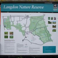Langdon Hills Nature Reserve dog walks, Essex