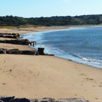 Porthcawl dog-friendly Beach, Wales - Dog walks in Wales
