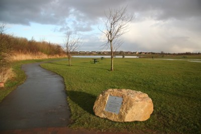 Country Park dog walk near Cleethorpes, Lincolnshire - Driving with Dogs
