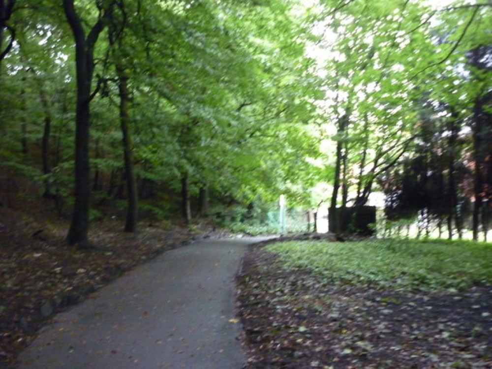 Dunwood dog walks near Oldham, Lancashire - Dog walks in Lancashire