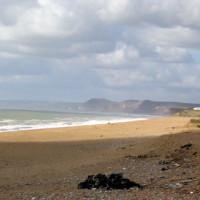 Cogden dog-friendly beach, Dorset - Dog walks in Dorset