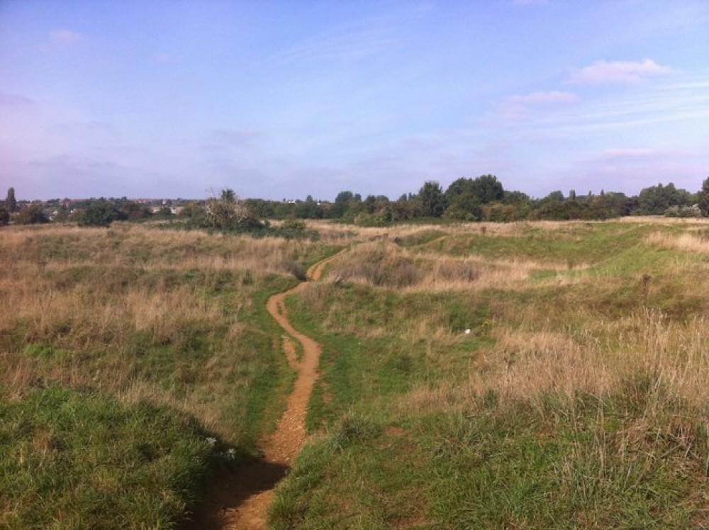 Bradlaugh Fields dog walk, Northamptonshire - Dog walks in Northamptonshire