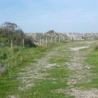 Somme nature reserve dog walk, France - Image 4