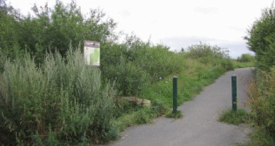 A55 dog walk near Mold, Flintshire, Wales - Driving with Dogs